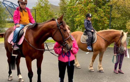 Rideklubben hester